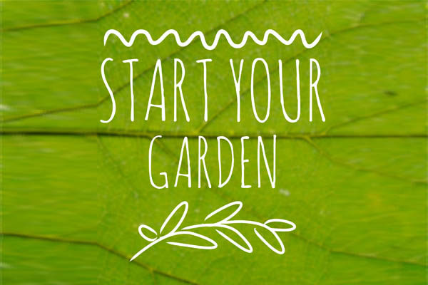 start garden