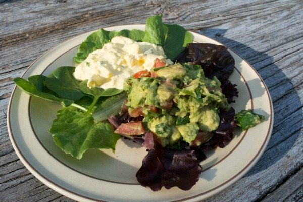 pantry raid dinner featuring a plate of lettuce, egg salad, and guacamole